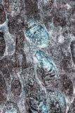 Abstract Nature Organic Fine Art Print Gray Turquoise Fossil Texture