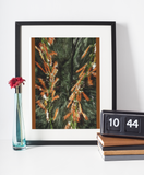 Abstract Nature Earth Energy Flower Fine Art Print Brown Green Black