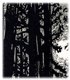 All is Calm Sumi-e Style Fine Art Print Pines Moon Silver Landscape