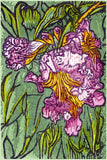 Fine Art Print Desert Willow Flower Bloom Pink Green Watercolor