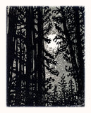 SET 2 Art CardS All is Calm Bright Forest Night Pines Moon Silver Landscape