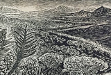MATTED Not Too Far To Walk Original Wood Engraving Hiker Desert Landscape