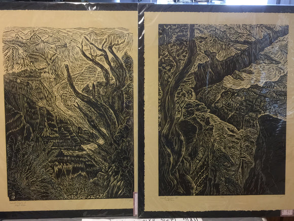 Matched Set 2 Woodcuts Magnificent Landscape Views Grand Canyon South West Rim
