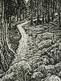 Original Wood Engraving Natures Peace Mountain Sunny Trail Among Pine Trees