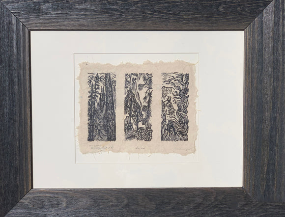 3 FRAMED Woodcut Print in a Set Alpine Sierra Pine Bristlecone Pinyon