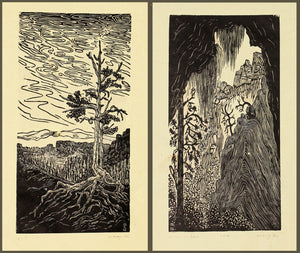 Southwest Landscapes Matched Set 2 National Park Woodcut Prints Bryce and Zion Views
