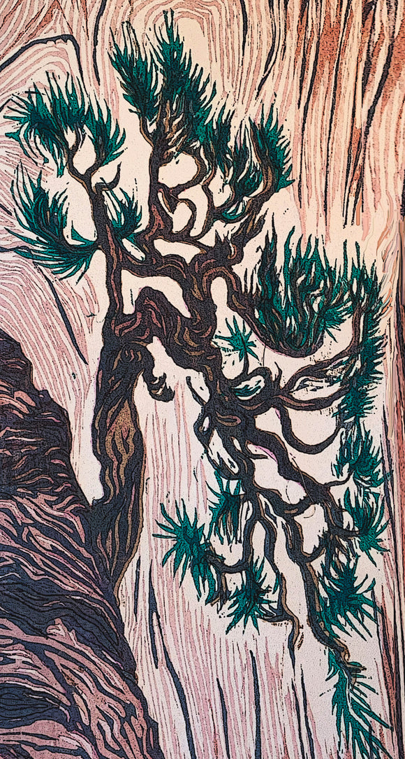 Cliff Hanger Canyon Pine Tree Japanese Woodcut Color Fine Art Print