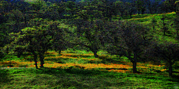 Tree Landscape Moody Meadow Dusk Flower Color Field Fine Art Print