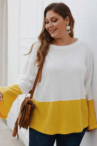 Curvy Round Neck Waffle Knit Top