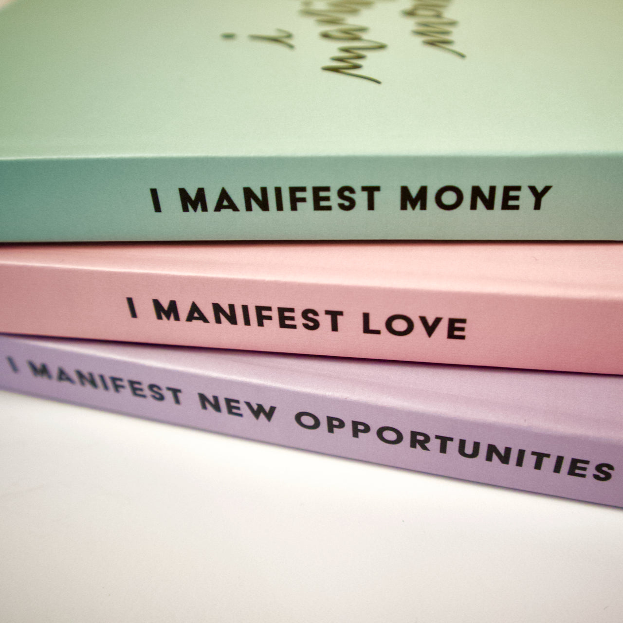 I Manifest New Opportunities Journal