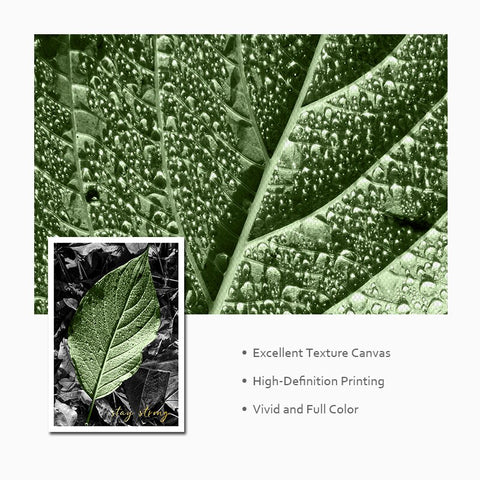 Image of Nordic Decoration Green Plants Poster Wall Art