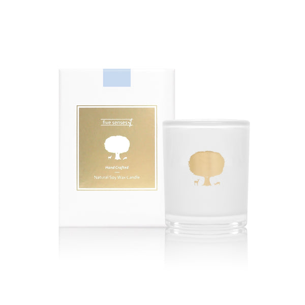 Ocean Coconut Natural Soy Wax Candle