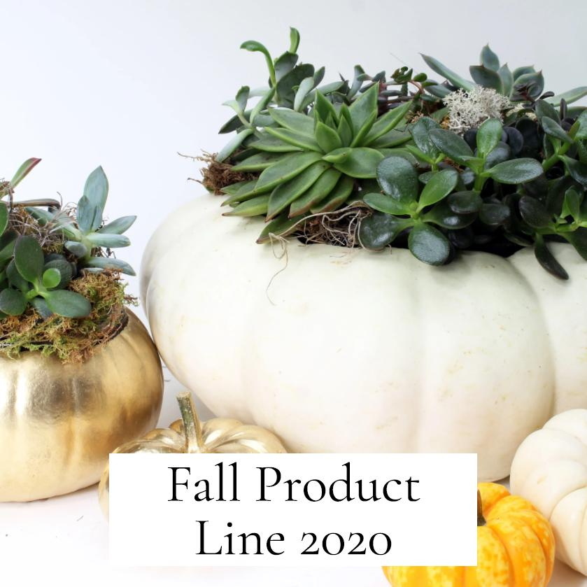 Fall Product Line 2020