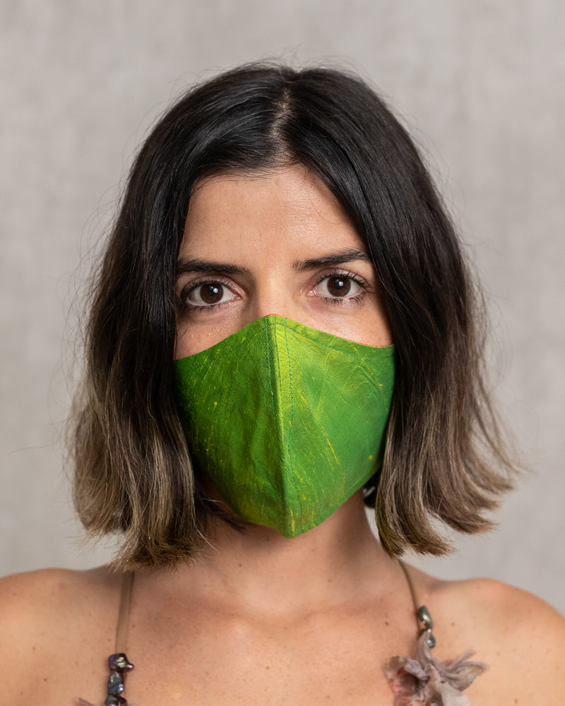Reversible Washable Green/ Bicolor Silk Mask