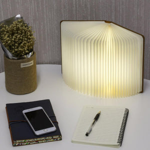 Sparky: Wooden Book Lamp