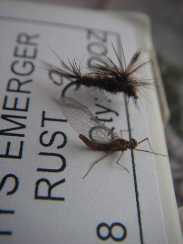 Know your insect shapes and sizes when fly fishing