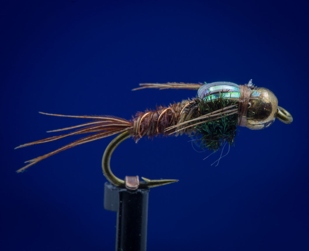 BH Gold Tungsten  Flashback Pheasant Tail Nymph