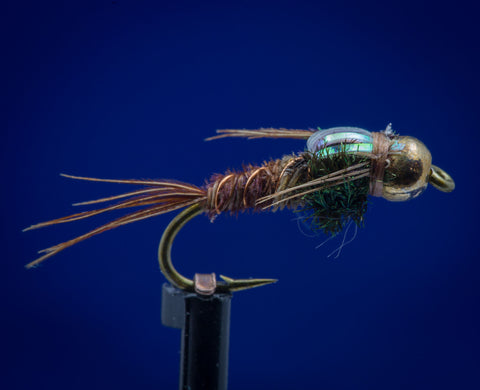 BH Gold Tungsten Pheasant  Flashback Tail Nymph