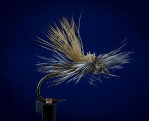 Hot Creek Caddis