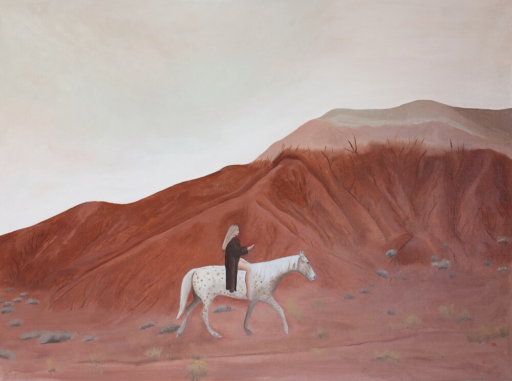 Appaloosa in the Painted Hills