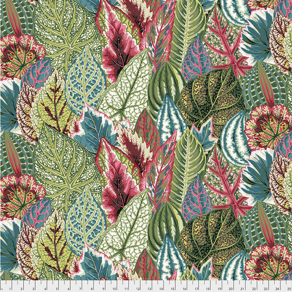 Kaffe Fassett - February 2020 - Coleus - Green