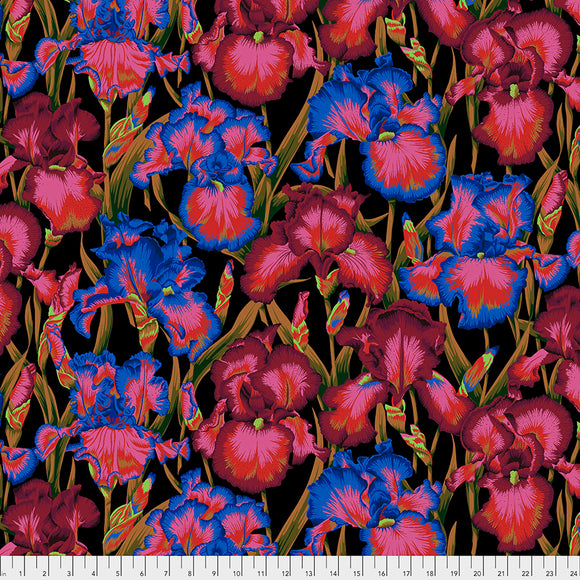Kaffe Fassett - August 2020 - Bearded Iris - Dark