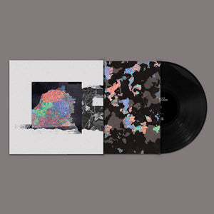 Dialect 'Loose Blooms' LP (Dense Truth)