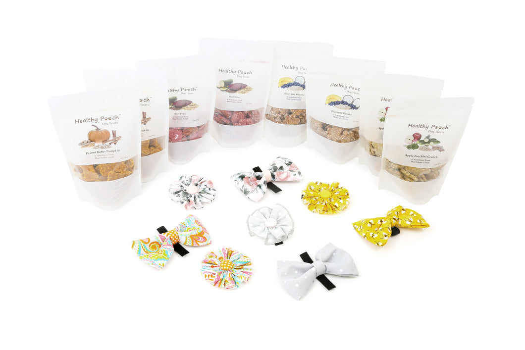 The Healthy Pooch Dog Treat / Accessory Package