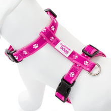 Load image into Gallery viewer, Paw Print Clasp Harness (PINK)