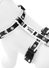 Load image into Gallery viewer, Paw Print Clasp Harness (BLACK)