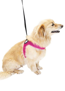 Nylon Matching Leash  (Black or Pink)