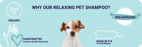 Why Our Relaxing Dog Shampoo?