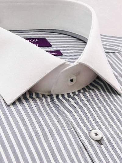Grey White Collar Stripe Tailored Fit Brandon Easy Iron Swiss Cotton Shirt