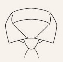 Shirt Bar Cutaway Collar