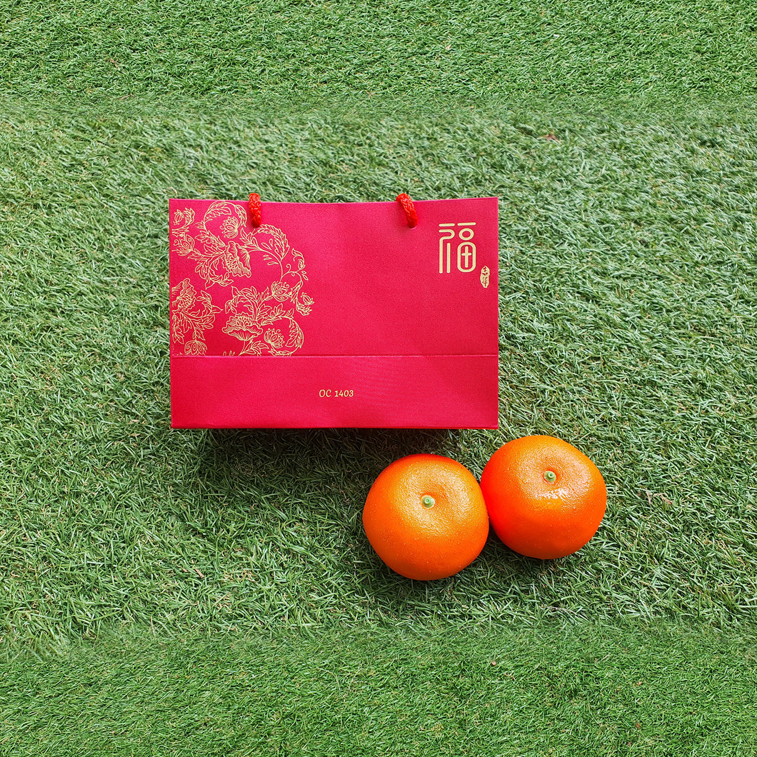 Festive Gifts: Good Fortune CNY Gift Bag - MOQ: 100
