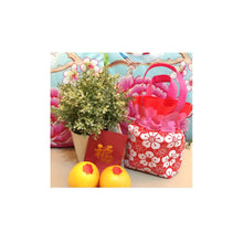 Load image into Gallery viewer, Festive Gifts: Non-woven Mandarin Orange Pouch