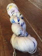 Load image into Gallery viewer, Superwash Merino Single Ply Fingering Yarn, 100g/3.5oz, I Love New York