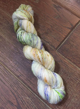 Load image into Gallery viewer, Superwash Merino Single Ply Fingering Yarn, 100g/3.5oz, Rendezvous