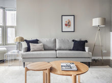 Load image into Gallery viewer, modern chic living room