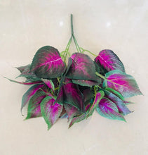 Load image into Gallery viewer, 35cm Purple & Red Small Plant - Green Gardens Mihiliya (Pvt) Ltd