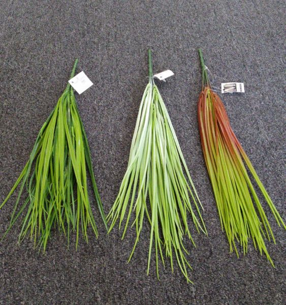 45cm Thin Grass Bunch - Green Gardens Mihiliya (Pvt) Ltd