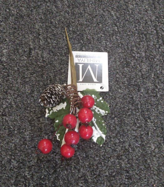 15cm Mini Pine Cone & Berry Twig - Green Gardens Mihiliya (Pvt) Ltd