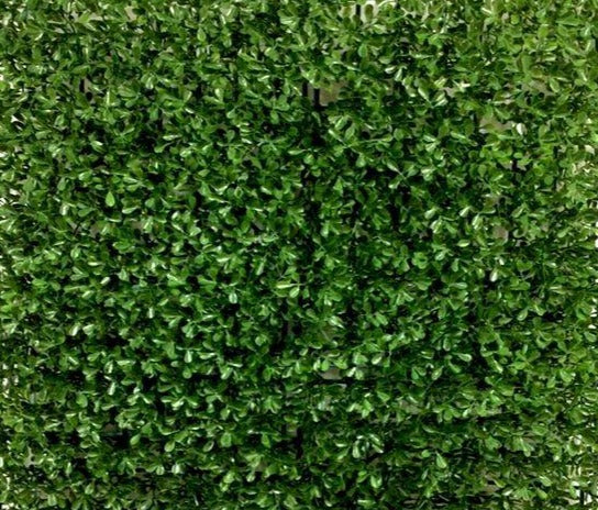 Waxy Leaf Vertical Garden with UV (SQM) - Green Gardens Mihiliya (Pvt) Ltd