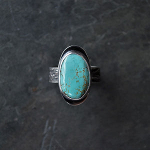 Sky Cloud Turquoise Ring with Ticklegrass Textured Band, Size 9.5 - Gayle Dowell