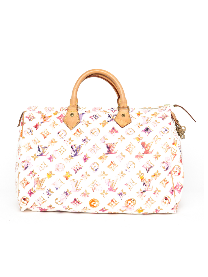 Louis Vuitton Watercolour Speedy Bag
