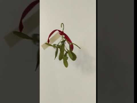 Christmas Mistletoe Sprig Decoration Kissing Ball made from Paper