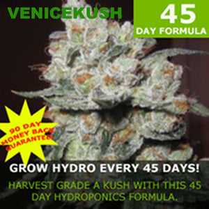 Venice Kush 45 day formula for hydro