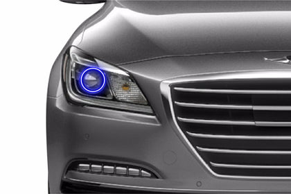 Hyundai Genesis Sedan (15-16): Profile Prism Fitted Halos (Kit)