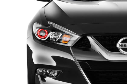 Nissan Maxima (15-17): Profile Prism Fitted Halos (Kit)
