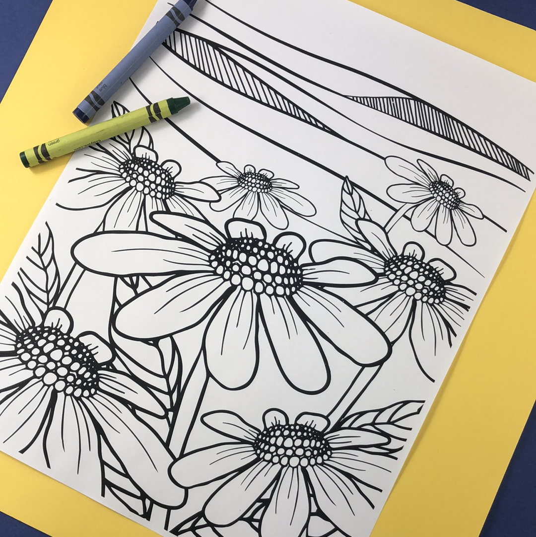 Field of Wildflowers Coloring Page Download - Tree Planted with Purchase, Artisan Goods handmade by Beth Millner Jewelry